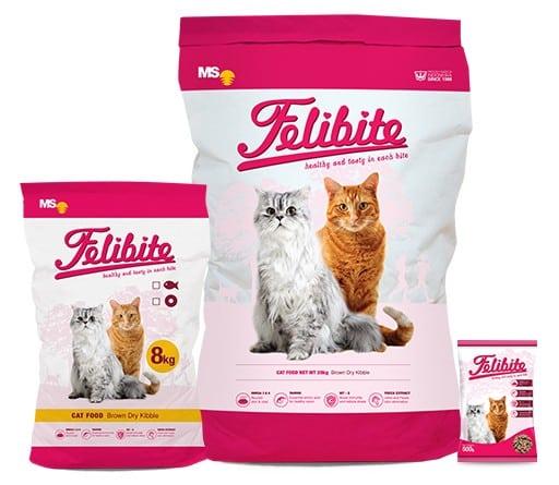 10 Merk Makanan Kucing Terbaik Yang Bagus Dan Murah
